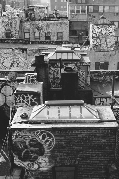 Max Yampolsky NYC
